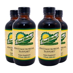 Good Herbs Antimicrobial Support    4 Pack